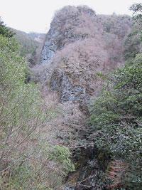201401-yu-2